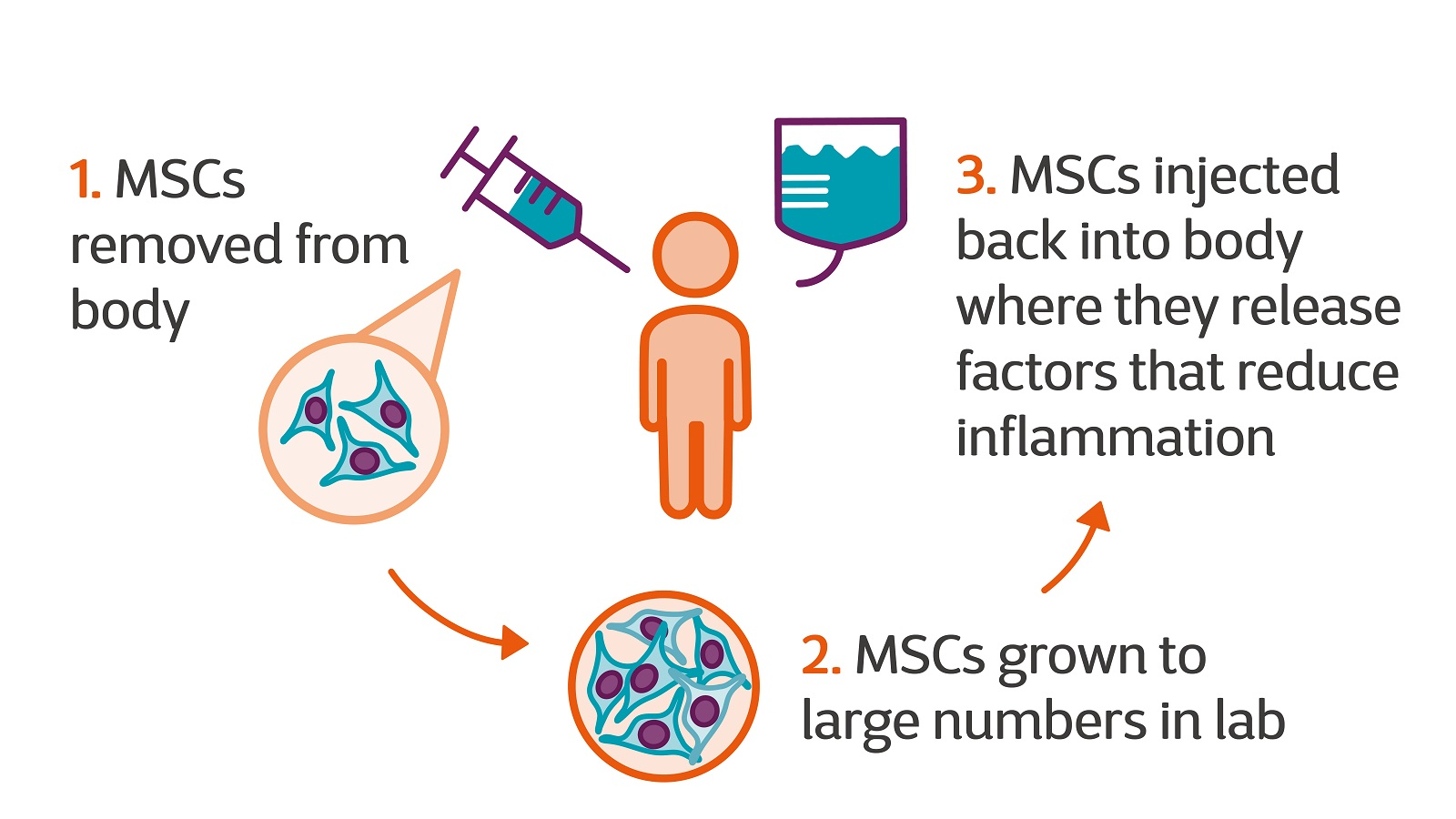 First Results Of New Stem Cell Therapy Trial Announced Multiple Sclerosis Society Uk