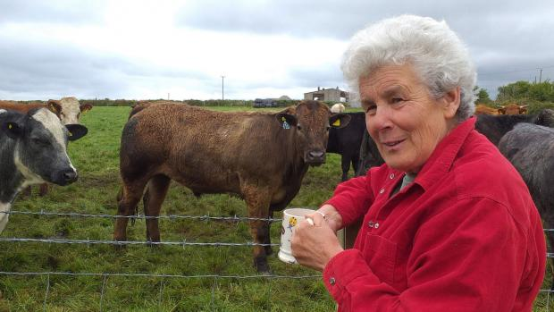 Susannah,outside on a sunny day, looks to camera, holding a mug. She is wearing a red fleece with her arm resting on a fencepost. Behind her on the other side of the fence are some curious cows.