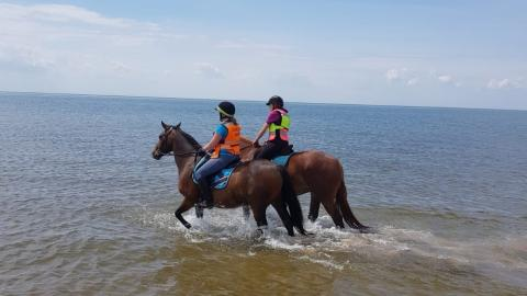 Two people riding horses in the sea
